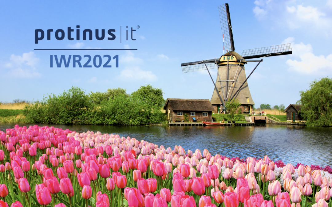 Protinus, IT is a winner of three National IWR2021 procurement